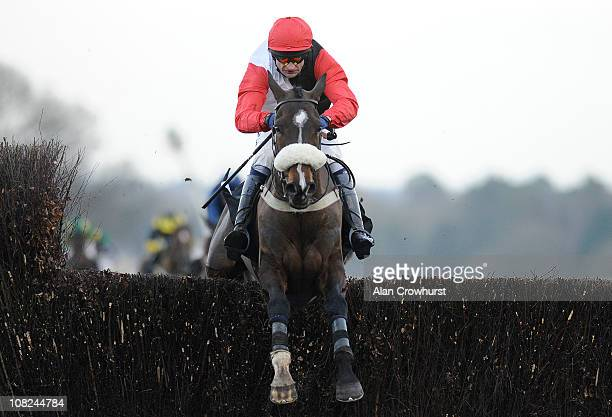 Andrew Thornton and Tatenen clear the last to win The victorchandlercom Handicap Steeple Chase at Ascot racecourse on January 22 2011 in Ascot England