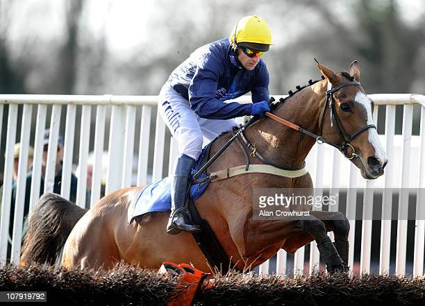 Andrew Thornton riding Half Cocked clear the last to win The Docker Hughes Memorial Novices' Hurdle Race at Fontwell racecourse on January 07 2011 in...