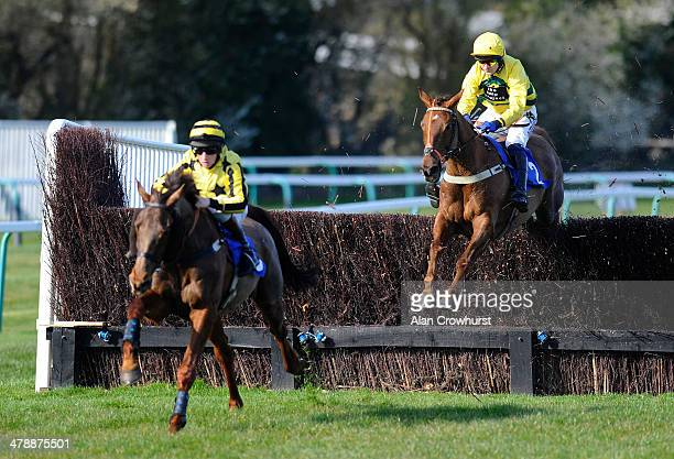 Andrew Thornton riding Itoldyou in their way to winning The 32Red Casino Handicap Steeple Chase at Fontwell racecourse on March 15 2014 in Fontwell...