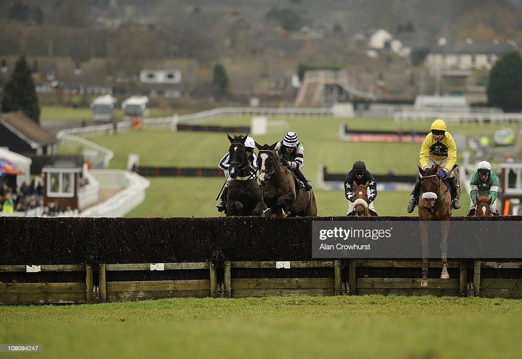 Plumpton Races