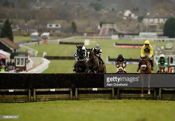 Andrew Thornton riding She's Humble take a fence before winning The Open A Star Sports Account On 08000 521321 Handicap Steeple Chase at Plumpton...