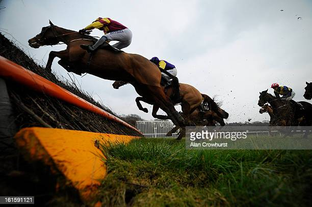 Andrew Thornton riding Somerby on their way to winning The Breathe Spa Lingfield Marriott Handicap Steeple Chase at Lingfield racecourse on February...
