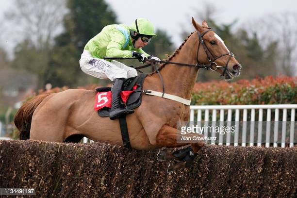 Andrew Tinkler riding Ardmayle clear the last to win The Edmund Fermoy Memorial Handicap Chase at Sandown Park Racecourse on March 08 2019 in Esher...