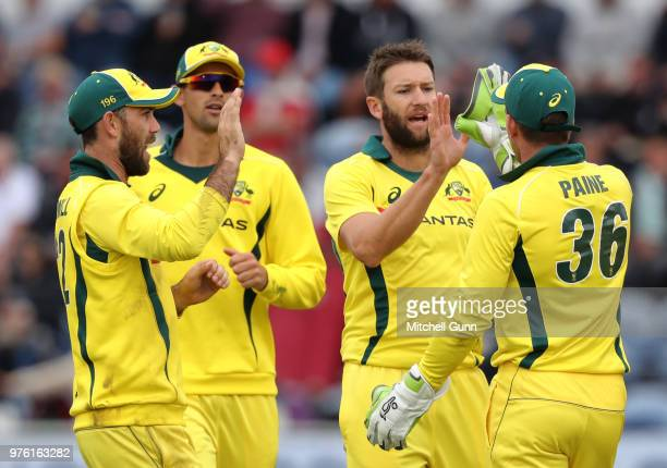 Andrew Tye and Tim Paine of Australia celebrate the wicket of Jason Roy of England during the 2nd Royal London One day International match between...