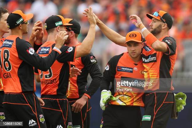 Andrew Tye of the Scorchers celebrates after taking a catch to dismiss Jake Weatherald of the Strikers during the Big Bash League match between the...