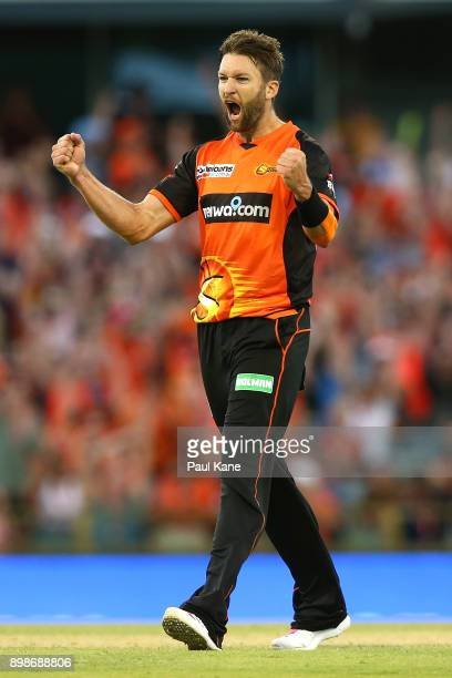 Andrew Tye of the Scorchers celebrates the wicket of John Hastings of the Stars during the Big Bash League match between the Perth Scorchers and the...