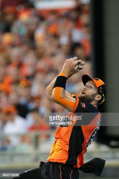 Andrew Tye of the Scorchers takes a catch to dismiss Nic Maddinson of the Sixers during the Big Bash League match between the Perth Scorchers and the...