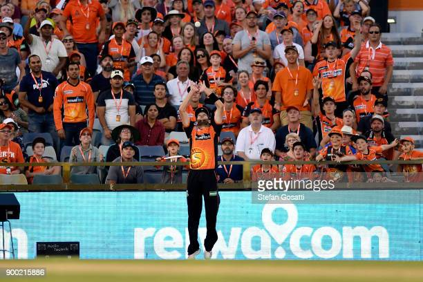 Andrew Tye of the Scorchers takes the catch to dismiss Nic Maddinson of the Sixers during the Big Bash League match between the Perth Scorchers and...