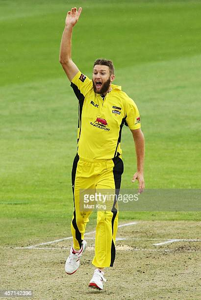Andrew Tye of the Warriors celebrates taking the wicket of Ben Dunk of the Tigers during the Matador BBQs One Day Cup match between Tasmania and...