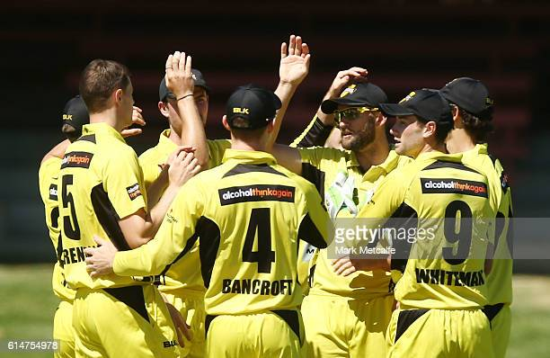 Andrew Tye of the Warriors celebrates with team mates after taking a catch to dismiss Ben Dunk of the Tigers during the Matador BBQs One Day Cup...