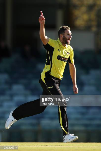 Andrew Tye of WA celebrates the wicket of Nick Larkin of NSW during the JLT One Day Cup match between Western Australia and New South Wales at the...