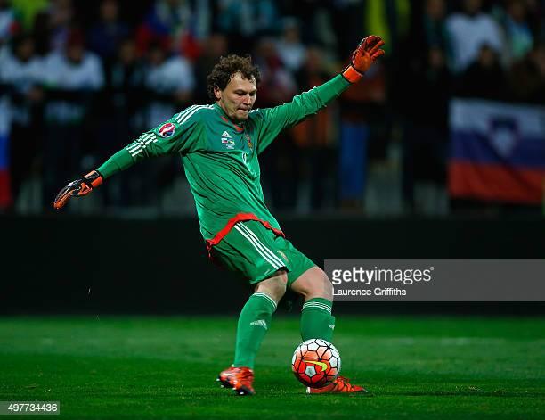 Andriy Pyatov of Ukraine in action during the UEFA EURO 2016 qualifier playoff second leg match between Slovenia and Ukraine at Ljudski Vrt Stadium...