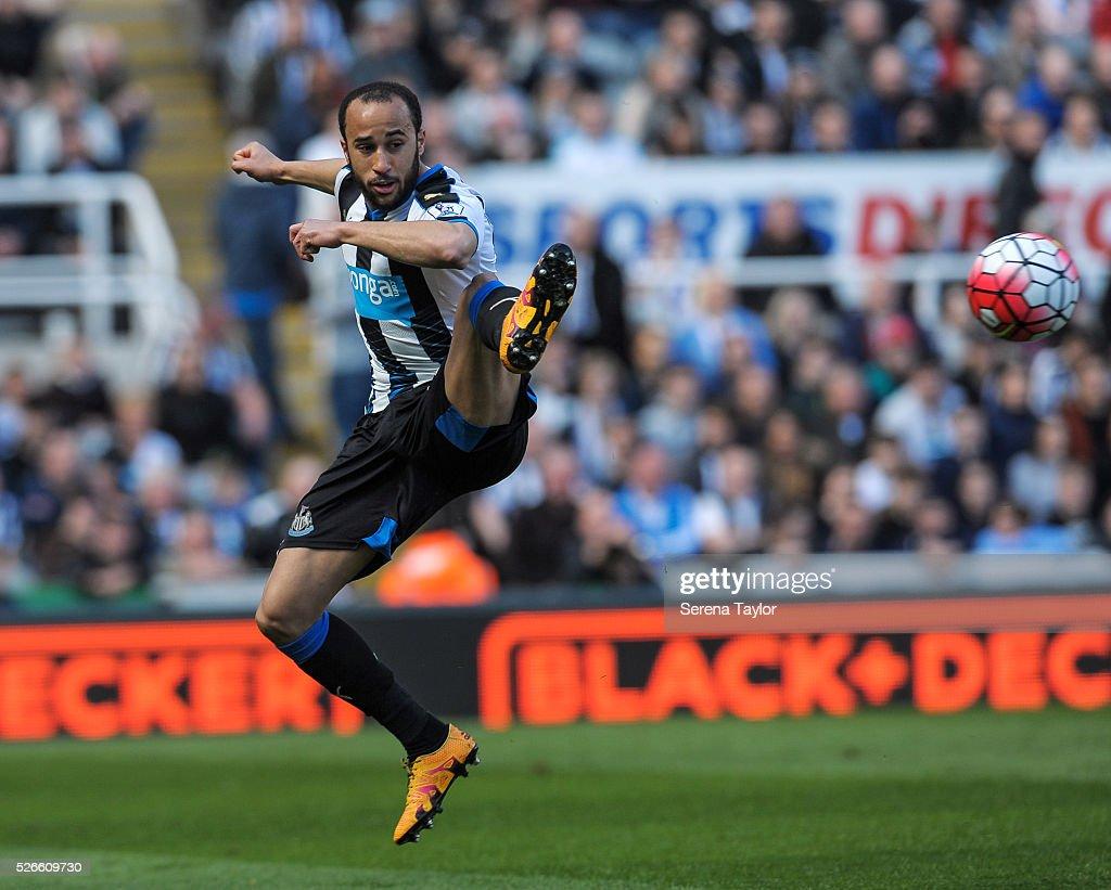 Newcastle United v Crystal Palace - Premier League : News Photo