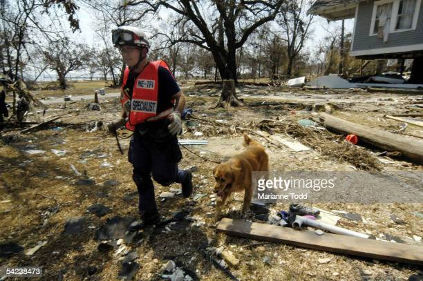 Andy, a FEMA trained dog, works with his trainer from the Lincoln, Nebraska Fire Department to find surivors on September 2, 2005 in Biloxi,...