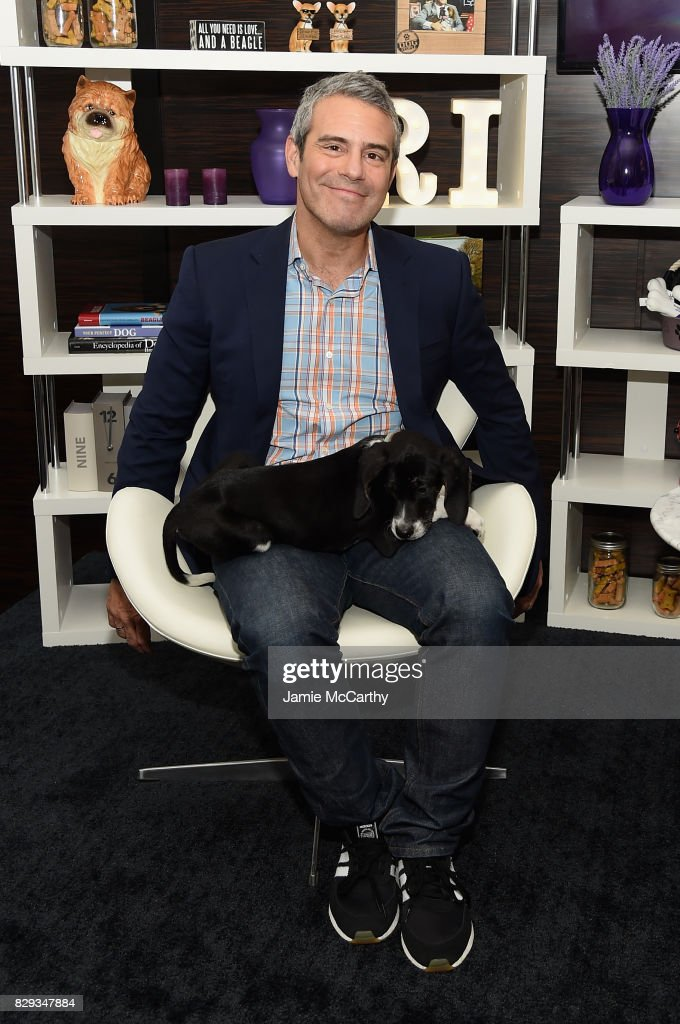 """Residence Inn And North Shore Animal League America Team Up With Andy Cohen For A """"Dog Days Of Summer"""" Adoption Event : News Photo"""