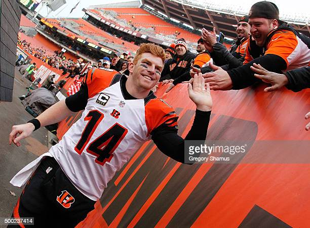 Andy Dalton of the Cincinnati Bengals celebrates a 373 win over the Cleveland Browns with fans at FirstEnergy Stadium on December 6 2015 in Cleveland...