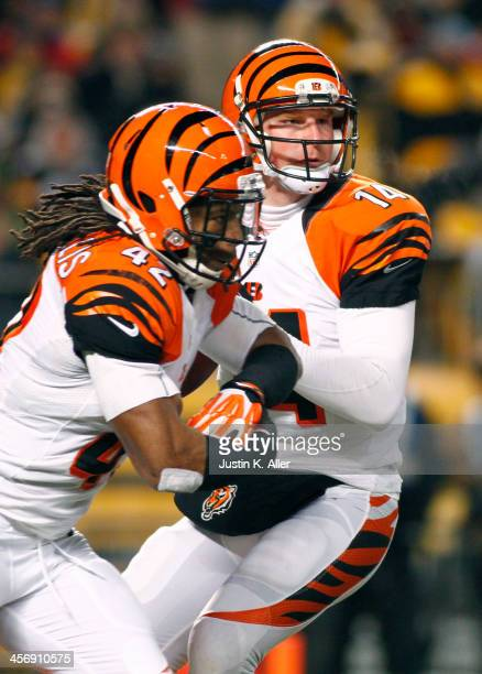 Andy Dalton of the Cincinnati Bengals drops back to pass against the Pittsburgh Steelers during the game on December 15, 2013 at Heinz Field in...