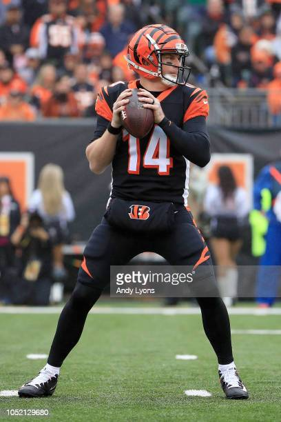 Andy Dalton of the Cincinnati Bengals drops back to throw a pass during the first quarter of the game against the Pittsburgh Steelers at Paul Brown...