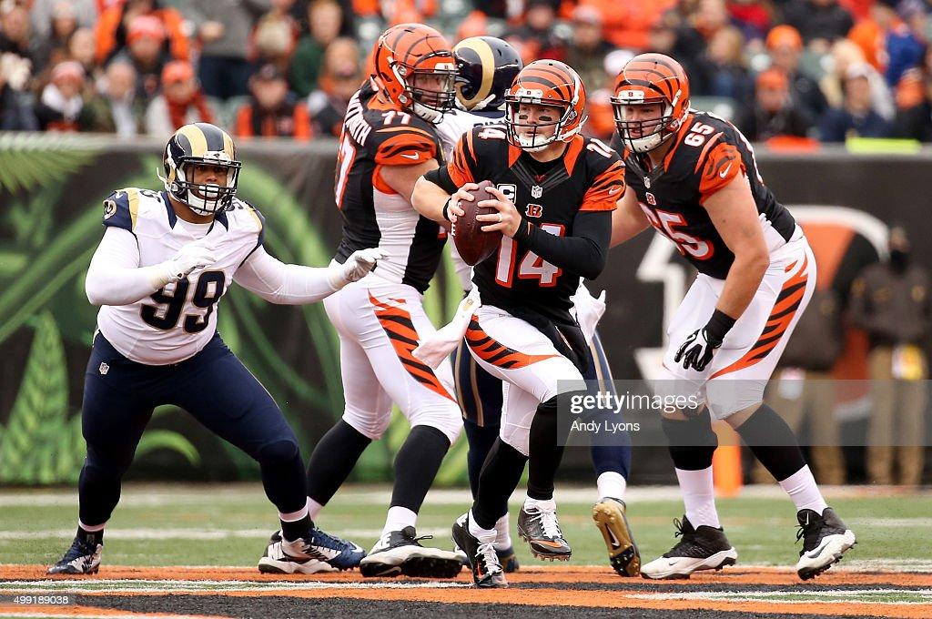 St Louis Rams v Cincinnati Bengals : ニュース写真
