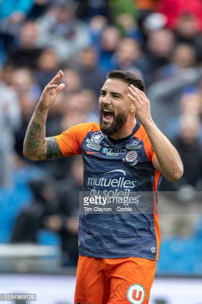 Andy Delort of Montpellier celebrates with the fans after scoring a goal during the Montpellier V Angers French Ligue 1 regular season match at Stade...