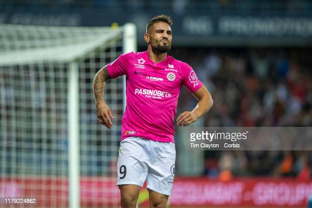 Andy Delort of Montpellier feels an injury after scoring his sides third goal during the Montpellier V Monaco French Ligue 1 regular season match at...