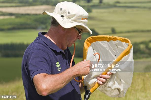Andy Foster of the National Trust biological survey team uses am insect pooter to check samples gathered in his sweep net as he assesses conditions...