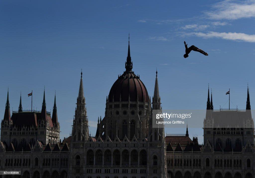 Budapest 2017 FINA World Championship - Day 17 : News Photo