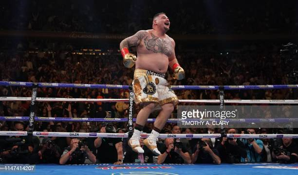 TOPSHOT Andy Ruiz of the US celebrates after knocking down Anthony Joshua from England in the 7th round to win by TKO during their 12round IBF WBA...