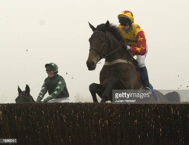 Andy Thornton and Sir Rembrandt clear an early fence before landing The Ian Williams Owners Novices Steeple Chase Race run at Cheltenham Racecourse...