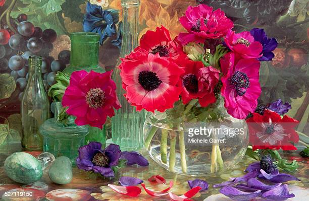 Anemone Flowers with Painted Background
