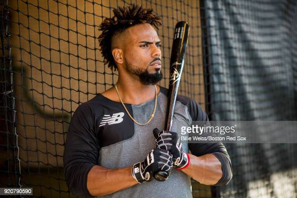 Aneury Tavarez of the Boston Red Sox poses for a portrait in the batting cage during a team workout on February 19 2018 at jetBlue Park at Fenway...