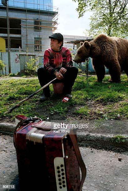 Dancing bear vegas-6751