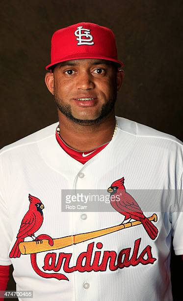 Angel Castro of the St Louis Cardinals poses for a portrait during photo day at Roger Dean Stadium on February 24 2014 in Jupiter Florida