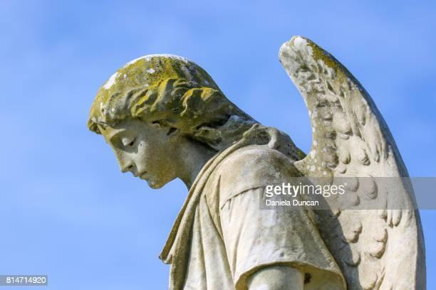 Angel close-up