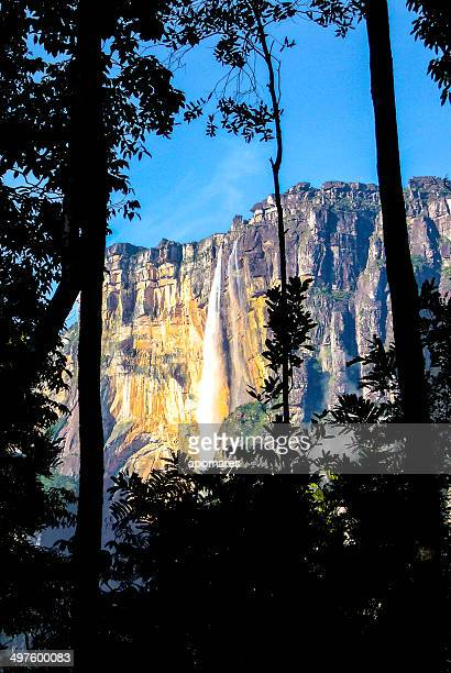 Angel falls. Highest waterfall in the world. Auyantepuy Venezuela