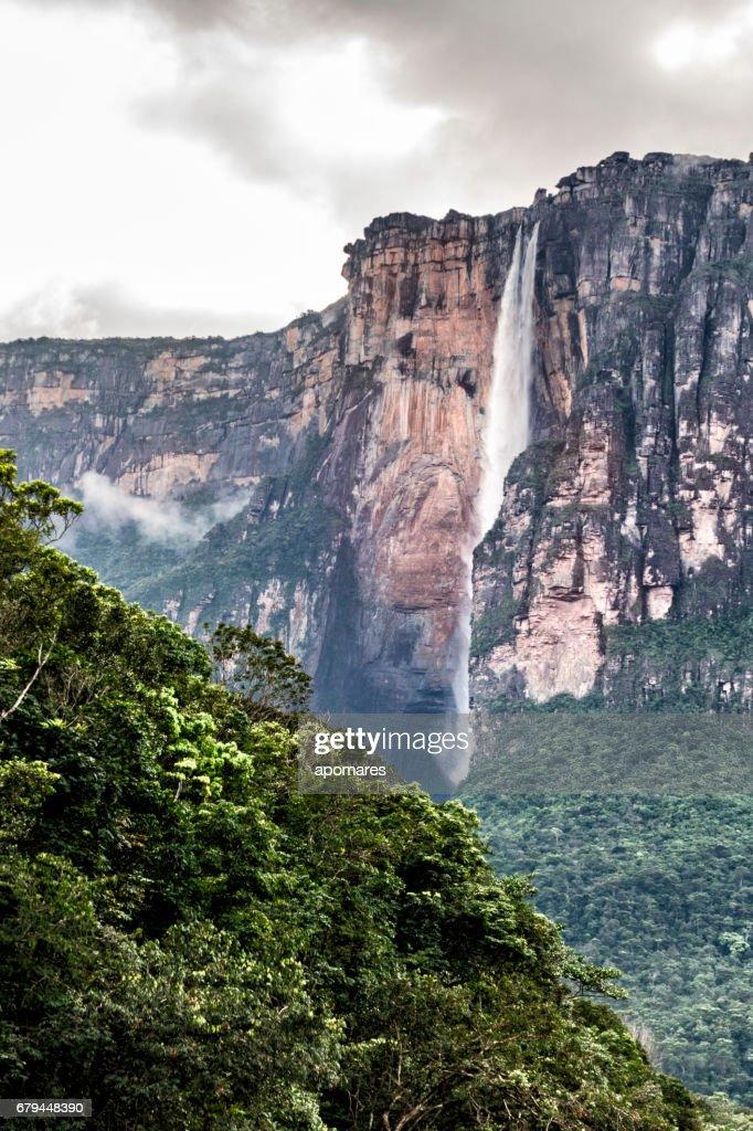 Icazu Brazil