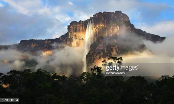 angel falls, venezuela at sunrise - paisajes de venezuela fotografías e imágenes de stock