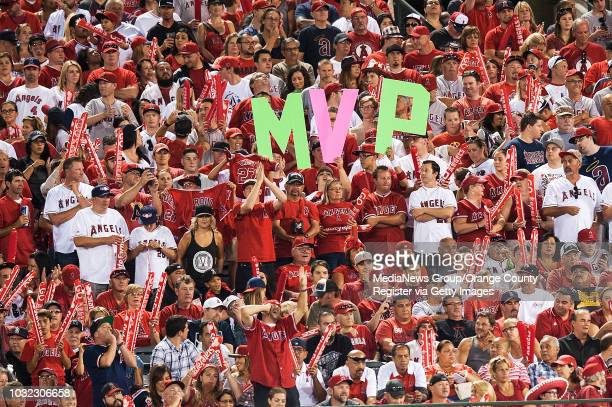 Angel fans show their support for Mike Trout during game 1 of the American League Division Series at Angel Stadium on Thursday INFO angels1003kjs...