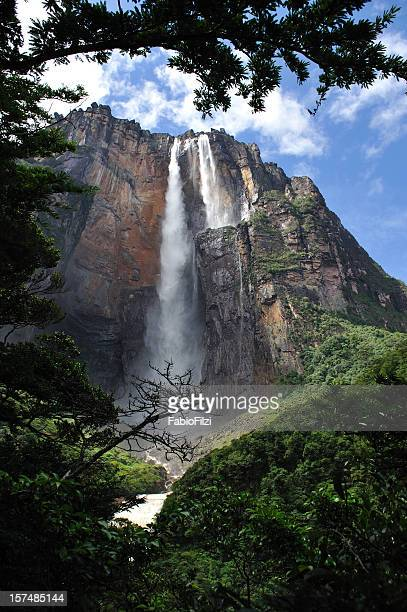 """""""salto angel"""" - angel falls stock photos and pictures"""