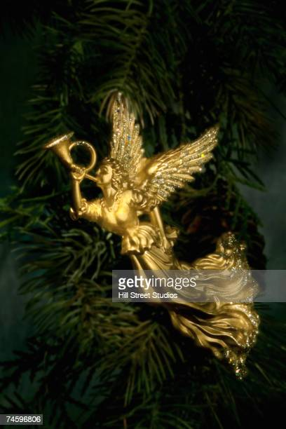 Angel ornament on pine branch
