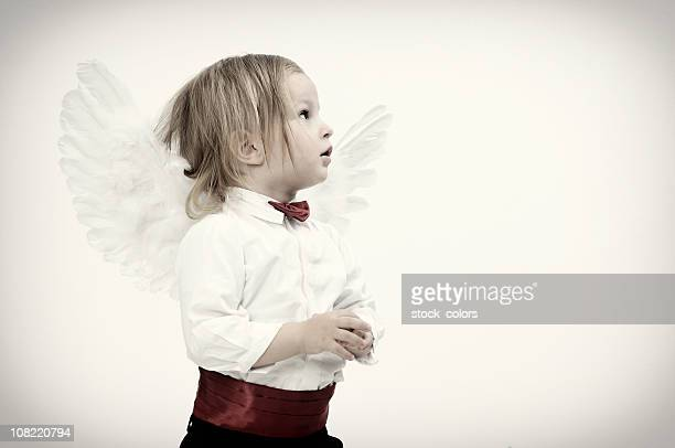 angel - funny cupid stock pictures, royalty-free photos & images