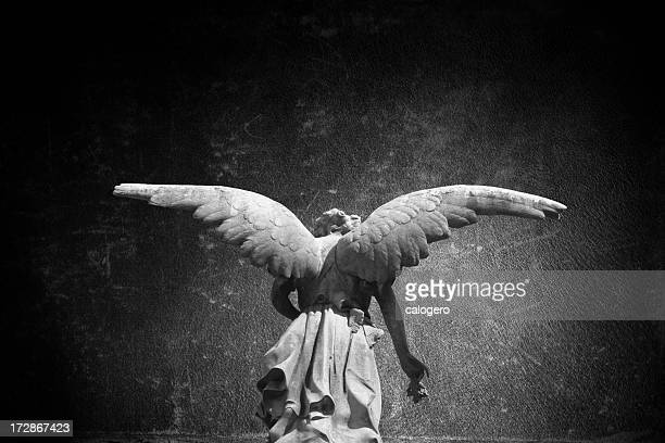 angel - cemetery stock pictures, royalty-free photos & images