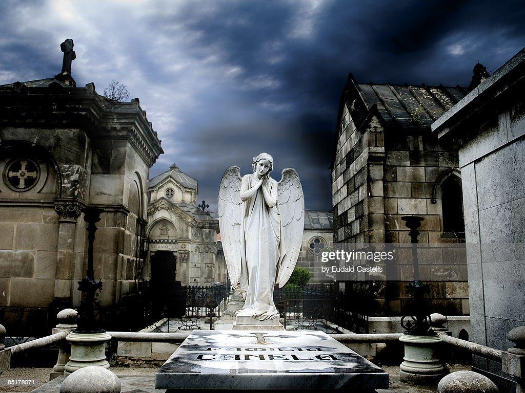 Angel : Stock Photo