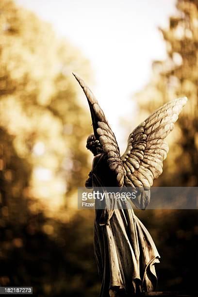 angel scupltue back