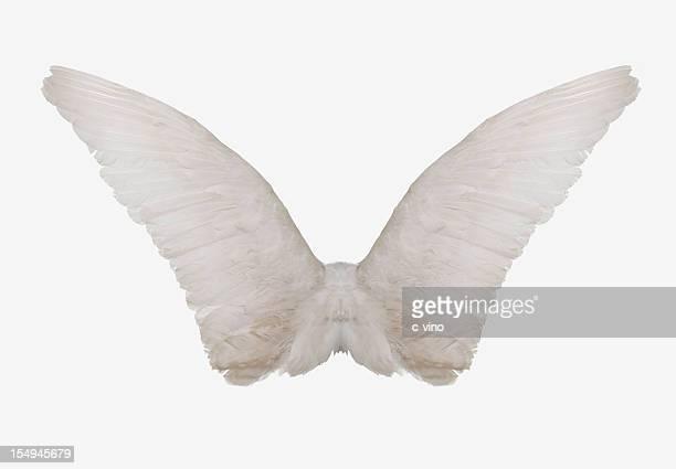 Engel Flügel