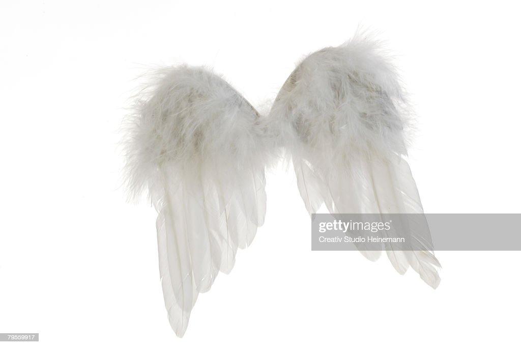 Angel wings : Stock Photo