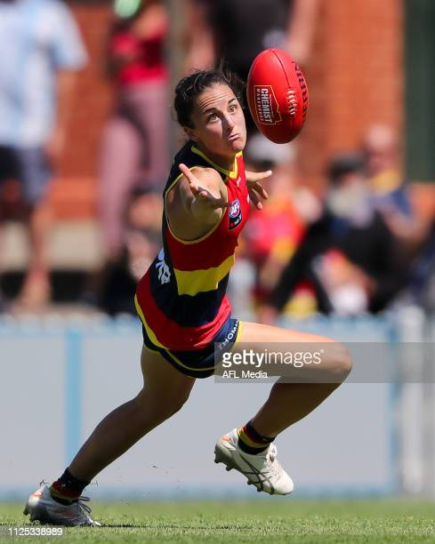 Angela Foley of the Crows pressured by Danielle Orr of the Cats during the 2019 NAB AFLW Round 03 match between the Adelaide Crows and the Geelong...