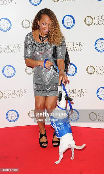Angela Griffin attends the annual Collars Coats Gala Ball in aid of The Battersea Dogs Cats home at Battersea Evolution on October 30 2014 in London...
