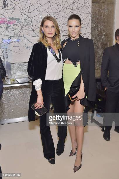 Angela Lindvall and Adriana Lima attend the UCLA IoES honors Barbra Streisand and Gisele Bundchen at the 2019 Hollywood for Science Gala on February...