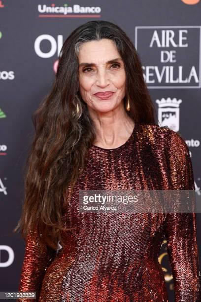 Angela Molina attends the Goya Cinema Awards 2020 during the 34th edition of the Goya Cinema Awards at Jose Maria Martin Carpena Sports Palace on...